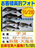 20151128-yamaguchi-tinu.jpg