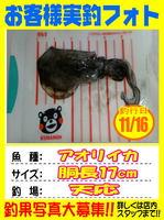 okyakusama-20151116-niho-1.jpg