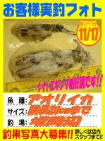 okyakusama-20151117-koyaura-aori.jpg