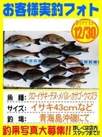 20151230-yamaguchi-matano.jpg