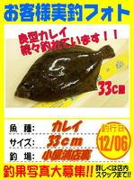 okyakusama-20151206-koyaura-karei.jpg