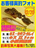 okyakusama-20151220-koyaura-kisu.jpg
