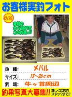 okyakusama-20151226-ooshima-01.jpg