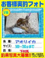 okyakusama-20160116-tsushima-aori.jpg