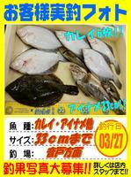 okyakusama-20160327-koyaura-karei (2).jpg