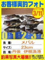 photo-okyakusama-20160311-toyooka-01.jpg