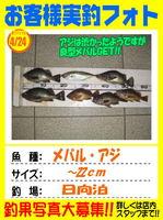 photo-okyakusama-20160424-ooshima-1.jpg