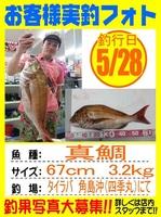 20160527-houfu-tairaba1.jpg