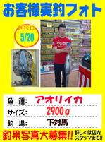 okyakusama-200160520-tsushima-aori.jpg