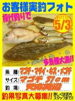 okyakusama-20160503-koyaura-magoti.jpg