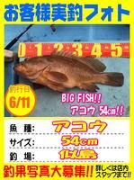 okyakusama-20160611-niho-1.jpg