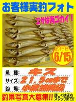 okyakusama-20160615-koyaura-kisu.jpg