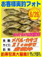 okyakusama-20160626-koyaura-mebaru.jpg
