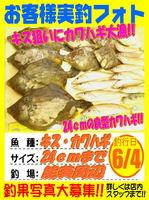 okyakusama-20610604-koyaura-kawahagikisu.jpg