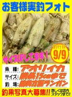 okyakusama-20160909-koyaura-aori.jpg