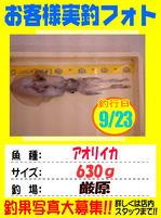 okyakusama-20160923-tusima.jpg