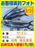 photo-okyakusama-20160831-toyooka-01.jpg