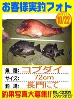 20161022-houfu-matano.jpg