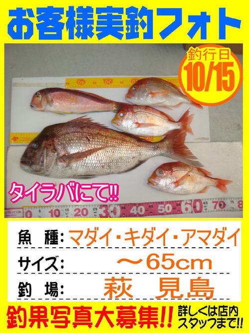http://www.e-angle.co.jp/shop/photo/assets_c/2016/10/photo-okyakusama-20161015-houfu-madai-thumb-500x668-23914.jpg