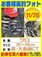 20161120-houfu-matano.jpgのサムネイル画像