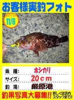 okuakusama-20161114-tsushima.jpg