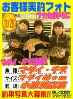 okyakusama-201161128-koyaura-madai.jpg