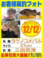 20161212-houfu-takenoko.jpg