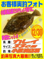 okyakusama-20161230-koyaura-karei.jpg