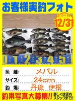 photo-okyakusama-20161231-toyooka-01.jpg