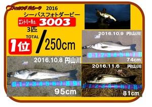 photo-okyakusama-20170130-toyooka-01.jpg