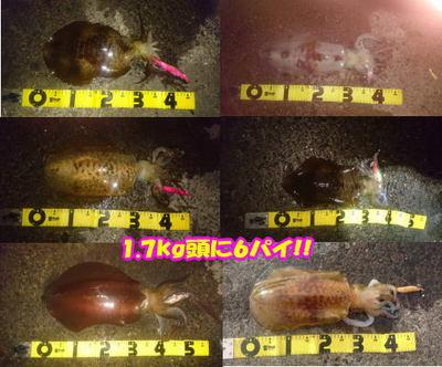 okyakusama-20170509-koyaura-3.jpg