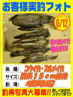 okyakusama-20170612-koyaura-surume.jpg