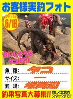 okyakusama-20170618-koyaura-tako.jpg