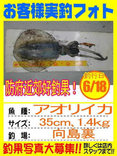 photo-okyakusama-20170618-hofu-aoriika.jpg