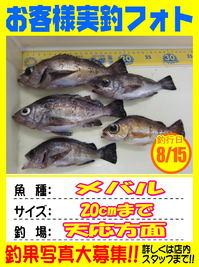 okyakusama-20170816-koyaura-1.jpg