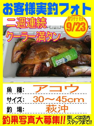 photo-okyakusama-20170923-hofu-akou.jpg