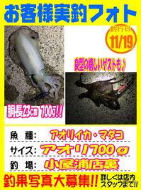 news-20171119-koyaura-1.jpg