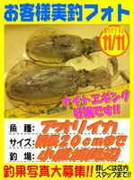okyakusama-20171111-koyaura-aori.jpg