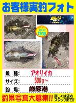 okyakusama-20171111-tujisann.jpg