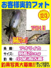okyakusama-20171203-koyaura-1.jpg
