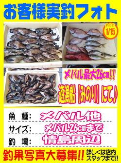 okyakusama-20180115-koyaura-1.jpg