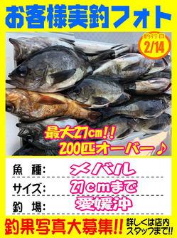 okyakusama-20180215-koyaura-1.jpg