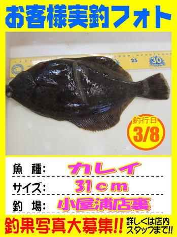 okyakusama-20180308-koyaura2.jpg