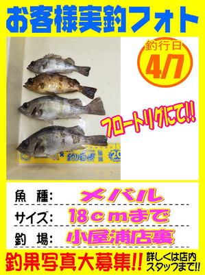 okyakusama-20180408-kotyaura1.jpg