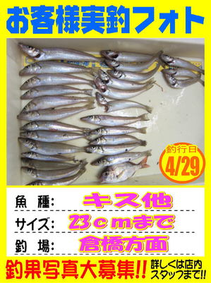 okyakusama-20180429-koyaura2.jpg