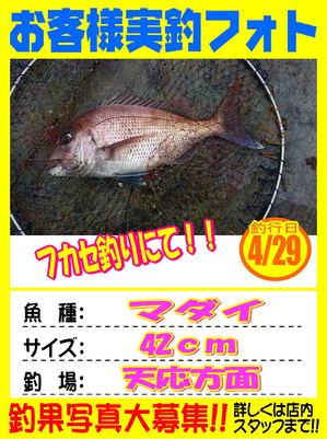 okyakusama-20180429-koyaura3.jpg