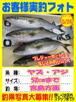 nokyakusama-20180525-koya1.jpg