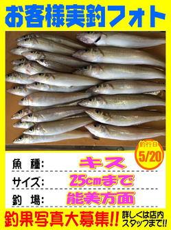 okyakusama-20180520-koyaura2.jpg