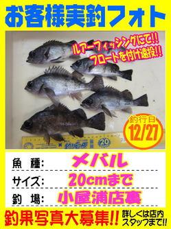 okyakusama-20181228-koya.jpg