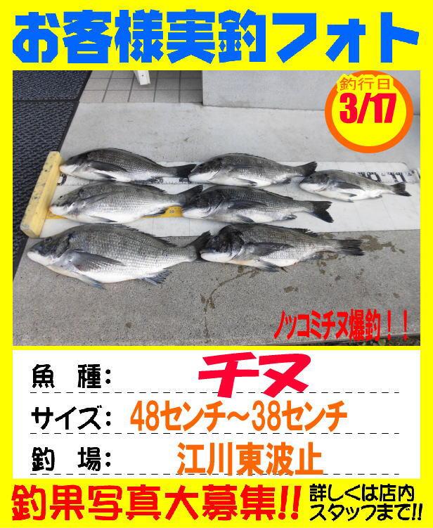 http://www.e-angle.co.jp/shop/photo/photo/photo-okyakusama-20170317-hidaka-chinu.jpg